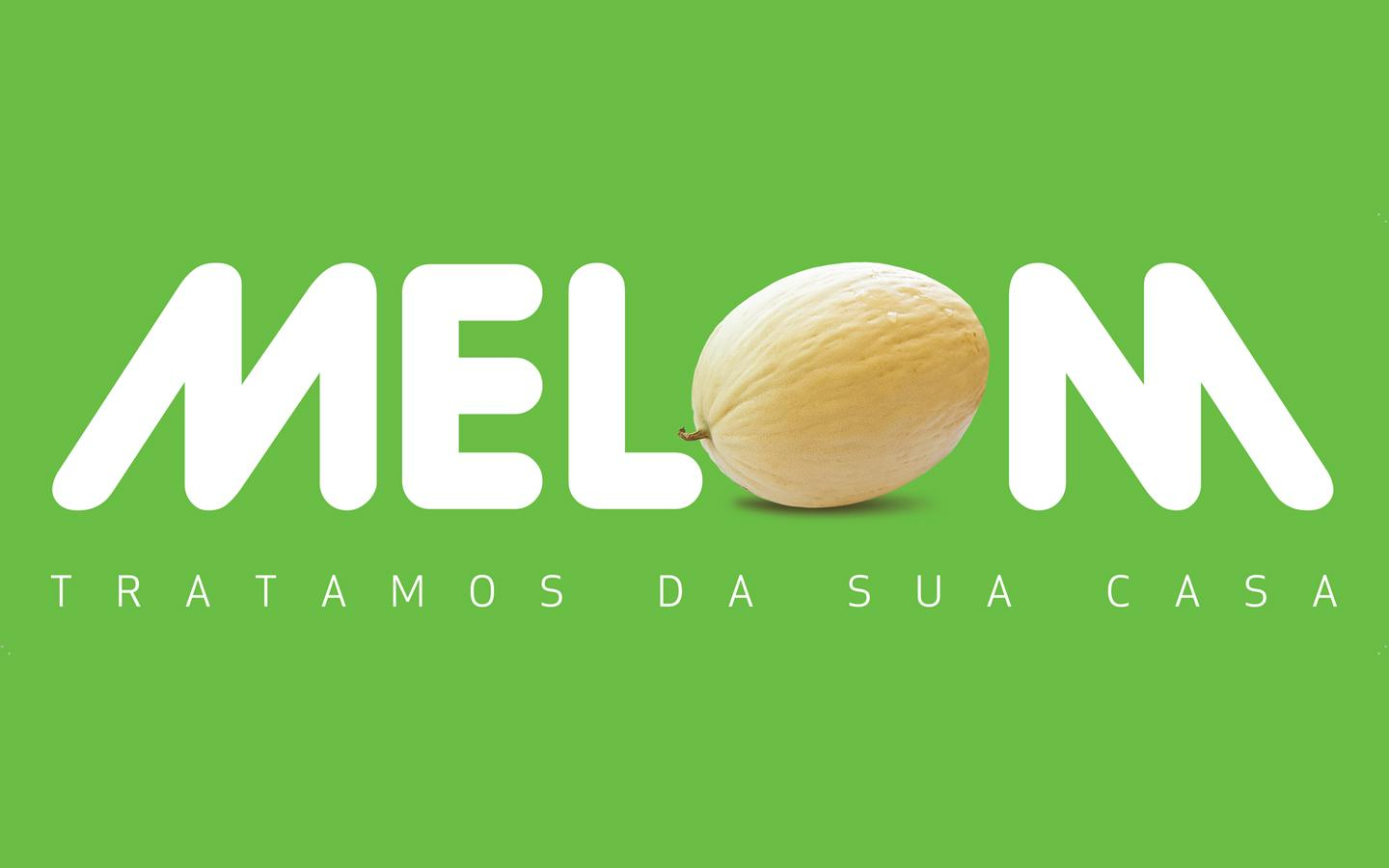 melom_work_1_1440x900